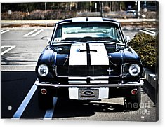 Shelby Gt350 Acrylic Print by Andrew  Cragin