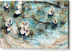 Shell Shadows Acrylic Print by Tanja Ware