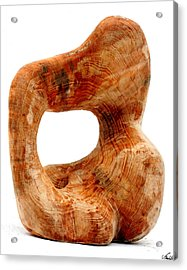 Sorprendido 3 Acrylic Print by Jorge Berlato