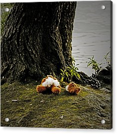Teddy Without Head Acrylic Print by Joana Kruse