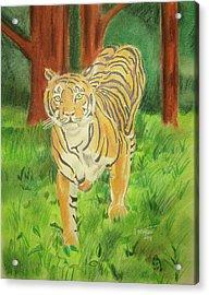 Tiger On The Prowl Acrylic Print by John Keaton