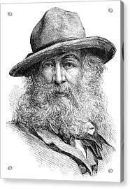 Walt Whitman (1819-1892) Acrylic Print by Granger