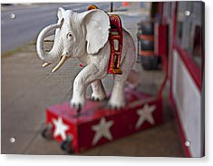 White Elephant Acrylic Print by Garry Gay