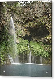 1004-1915 Natural Falls State Park 2 Acrylic Print by Randy Forrester