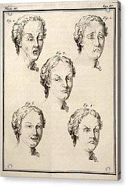 1749 Human Emotions And Expression Buffon Acrylic Print by Paul D Stewart