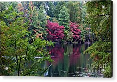 Sugar Ridge State Fish And Wildlife Area Acrylic Print by Jack R Brock