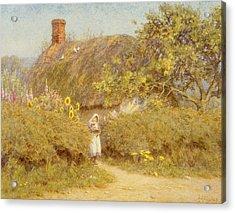 A Surrey Cottage Acrylic Print by Helen Allingham