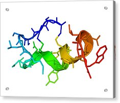 Endothelin-1 Molecule Acrylic Print by Laguna Design