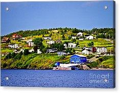 Fishing Village In Newfoundland Acrylic Print by Elena Elisseeva