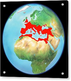 Roman Empire, Artwork Acrylic Print by Gary Hincks