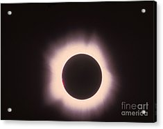Total Solar Eclipse With Corona Acrylic Print by Science Source