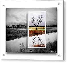 X Marks The Spot Acrylic Print by Brian Wallace