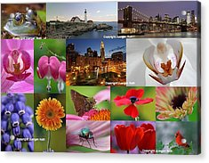 2012 Photography Artwork Highlights Acrylic Print by Juergen Roth