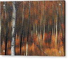 2385 Acrylic Print by Peter Holme III