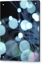 Close Up Of Fiber Optic Cables Acrylic Print by Cultura Science/Rafe Swan