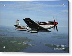 North American P-51 Cavalier Mustang Acrylic Print by Daniel Karlsson