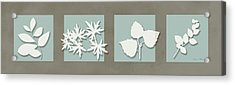 4 Flowers Acrylic Print by Nomi Elboim