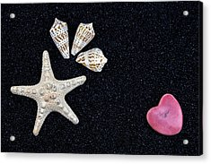 Starfish On Black Sand Acrylic Print by Joana Kruse
