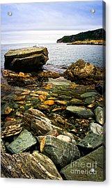 Atlantic Coast In Newfoundland Acrylic Print by Elena Elisseeva