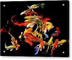 Koi Cluster Acrylic Print by Chua  ChinLeng