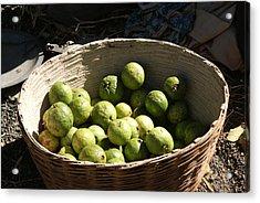 A Basket Full Of Guavas Just Outside Bhopal Acrylic Print by Ashish Agarwal