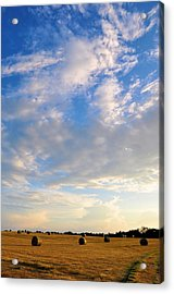 A Cause For Sunshine Acrylic Print by Jan Amiss Photography