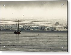 A Double-masted Sailboat Floats Near An Acrylic Print by Norbert Rosing