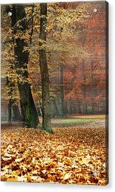 A Foggy Autumn Day Acrylic Print by Hannes Cmarits
