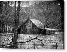 A Memory In Black And White Acrylic Print by Christine Annas