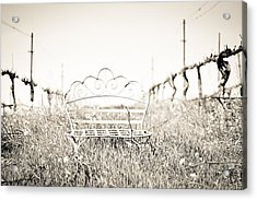 A Moment To Ponder Acrylic Print by Aileen Savage