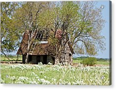A Place Called Home Acrylic Print by Lisa Moore
