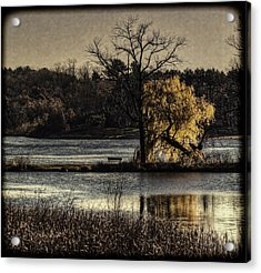 A Place To Think Acrylic Print by Thomas Young