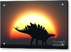 A Stegosaurus Silhouetted Acrylic Print by Mark Stevenson