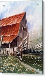 A Time For Daiseys Acrylic Print by Don F  Bradford
