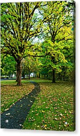 A Walk In The Park Acrylic Print by Dan Mihai