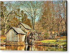 A Winters Day  Acrylic Print by Darren Fisher