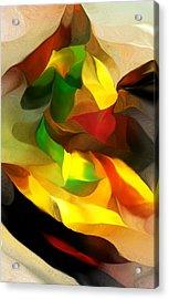Abstract 080512 Acrylic Print by David Lane