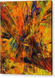 Abstract 100611 Acrylic Print by David Lane