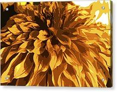 Abstract Flowers 14 Acrylic Print by Sumit Mehndiratta