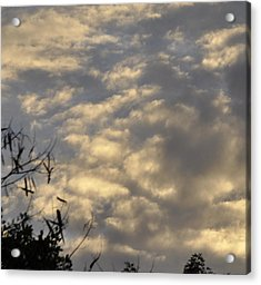 After The Storm Acrylic Print by Sandy Poore