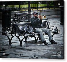 Afternoon Music Acrylic Print by Perry Webster