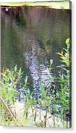 Alien In The Water Acrylic Print by Greg Geraci
