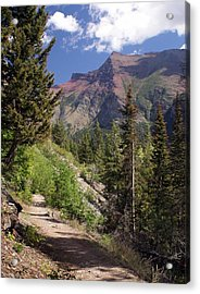 Along The Trail Acrylic Print by Marty Koch