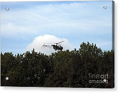 Alouette II Of The Belgian Army Acrylic Print by Luc De Jaeger