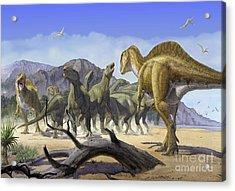 Altispinax Dunkeri Dinosaurs Attack Acrylic Print by Sergey Krasovskiy