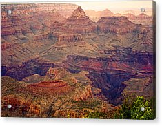 Amazing Colorful Spring Grand Canyon View Acrylic Print by James BO  Insogna