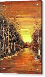 Amber River Acrylic Print by Vic  Mastis