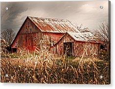 America's Small Farm Acrylic Print by Randall Branham