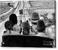 Amish Family Outing II Acrylic Print by Julie Dant