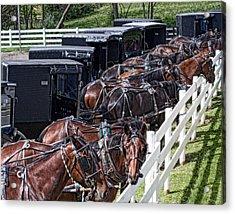 Amish Parking Lot Acrylic Print by Tom Mc Nemar